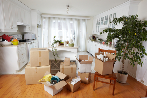 professional-movers-singapore